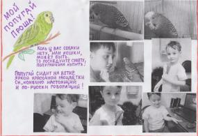 """ Мой попугайчик Проша"" Кабулов Арсен"