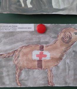 Собака- санитар на войне