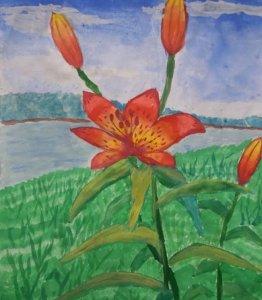 Цветок Якутии