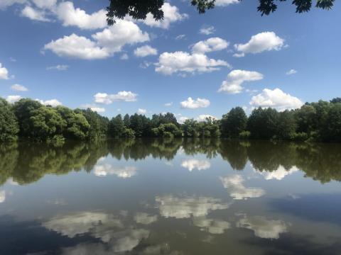 Гляжу в озёра синие...