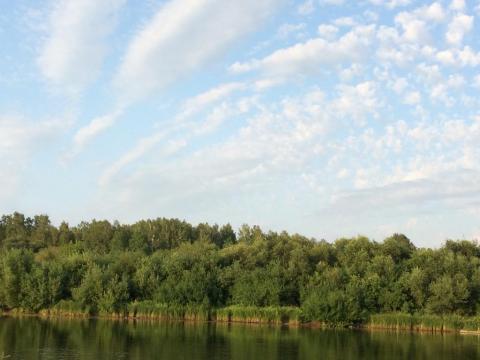 Бегут облака над моей рекой