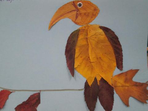 Заморская птица