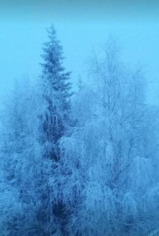 обЪятия зимы