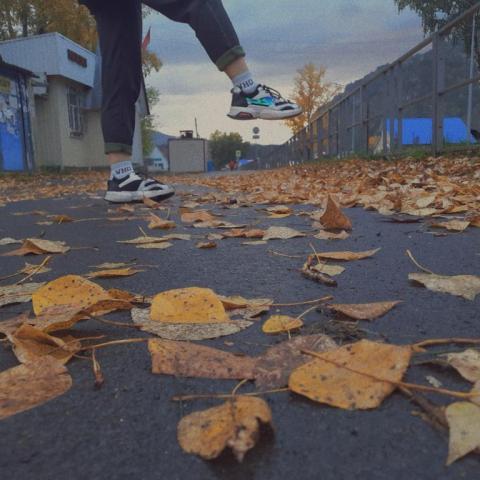 Осень на асфальте