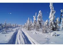 Зима на Колыме