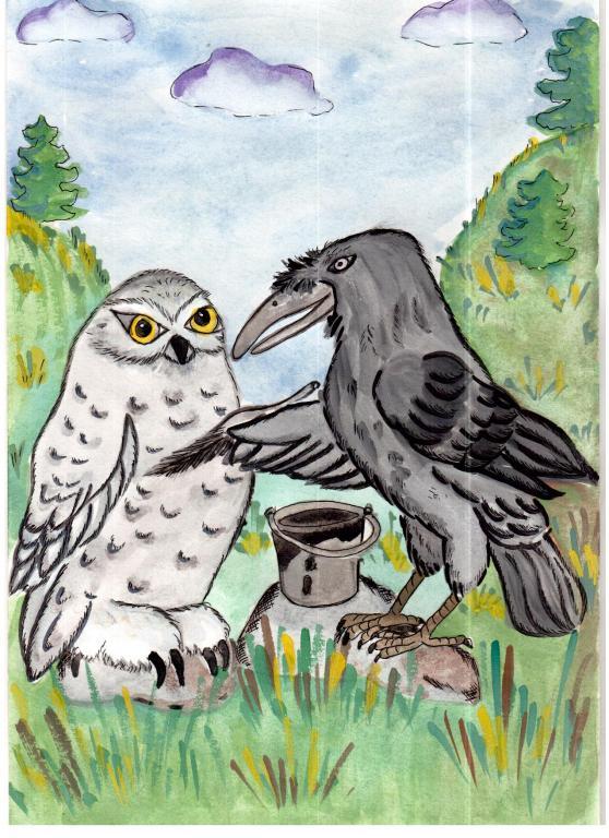 Сова и ворона картинка